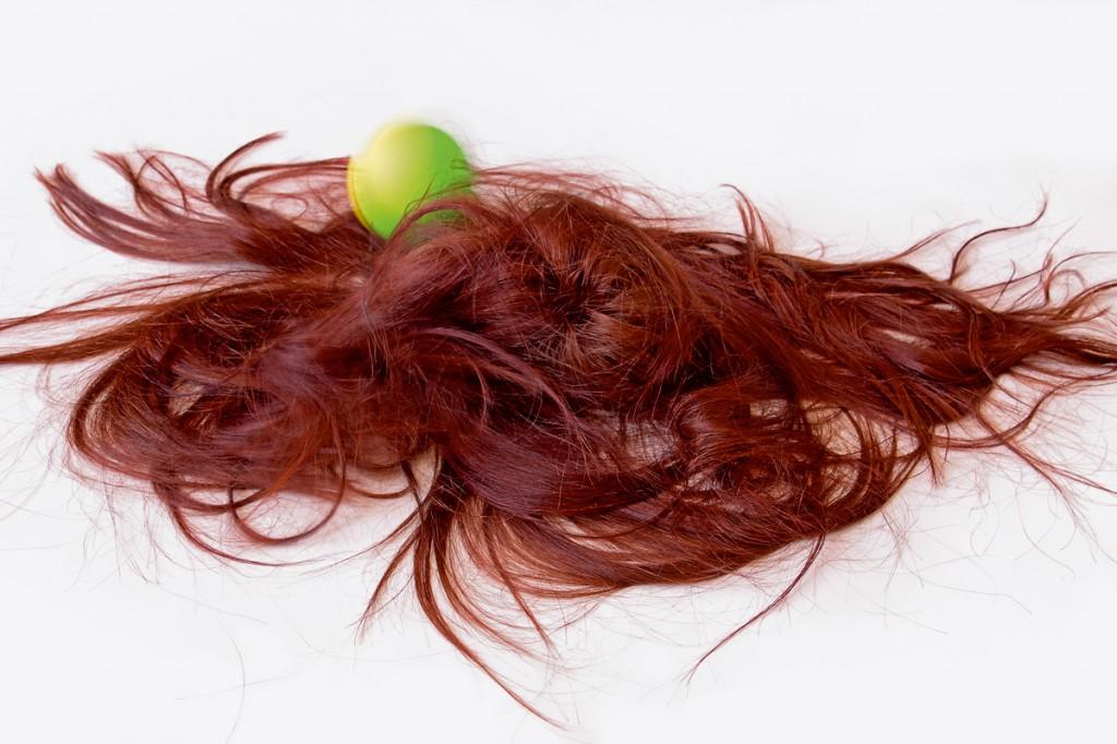 Haar der Berenike3